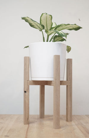Mid-Century Plant Stand (August 15 & 17)