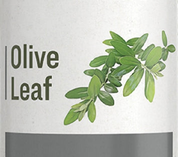 OLIVE LEAF - Cardiovascular & Immune System Support