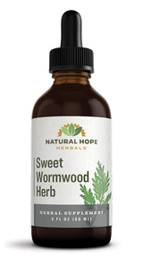 SWEET WORMWOOD HERB - Healthy Digestive Function & Immune System Tonic