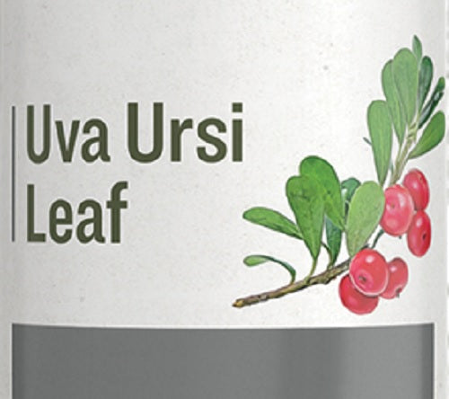 UVA URSI LEAF aka Bearberry - Urinary Tract Support Herbal Tincture
