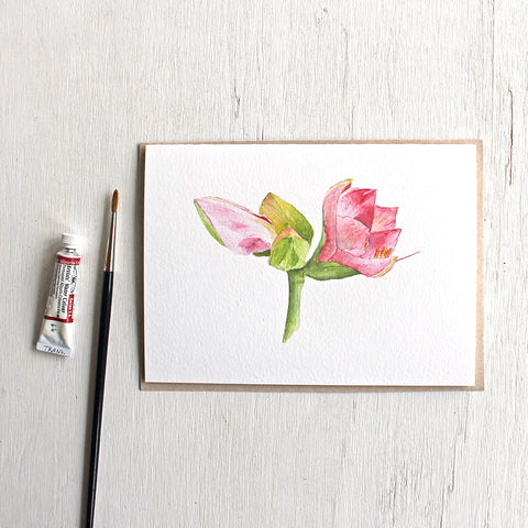Note card featuring a watercolor painting of a pink amaryllis plant. Artist Kathleen Maunder.