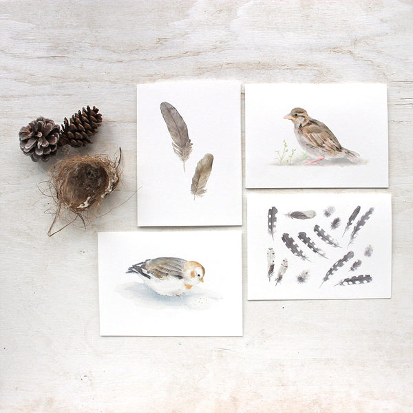 Four blank note cards featuring bird and feather watercolor paintings by Kathleen Maunder