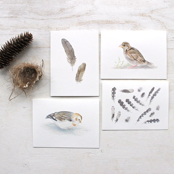 Watercolor note cards featuring bird and feather paintings by Kathleen Maunder