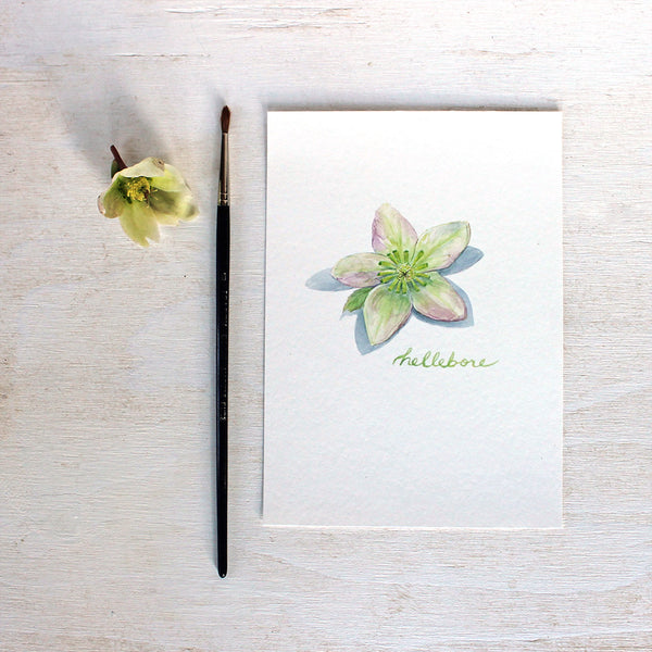 Hellebore art print featuring a watercolor painting by Kathleen Maunder