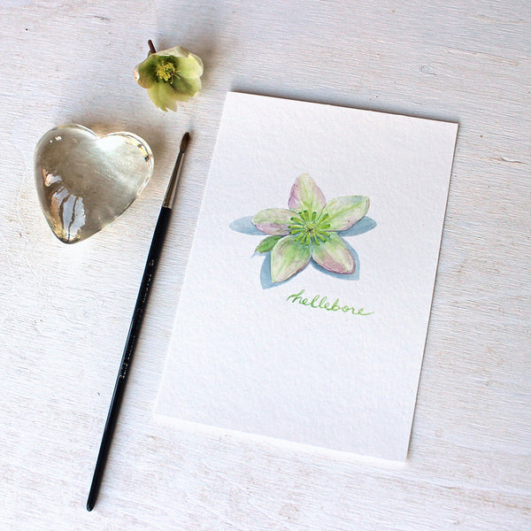 Lovely little art print featuring a watercolor painting of a hellebore flower by Kathleen Maunder