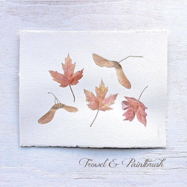 An original watercolor of autumn maple leaves and keys by Kathleen Maunder