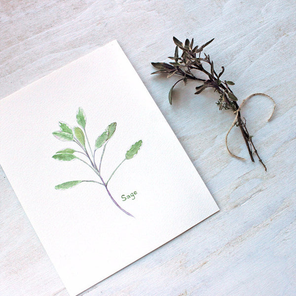 Sage watercolor print by Kathleen Maunder, trowelandpaintbrush