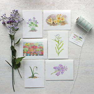 Set of six botanical note cards featuring flower watercolors by Kathleen Maunder