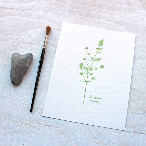 Summer savory herb print by watercolor artist Kathleen Maunder of Trowel and Paintbrush