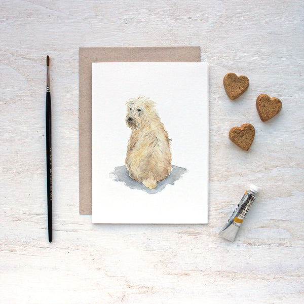 Soft coated wheaten terrier. Dog note cards by watercolor artist Kathleen Maunder.