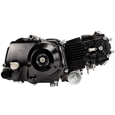 Engine Assembly - 110cc Automatic with Bottom Mount Starter - Version 6