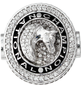Arabian Horse national champion ring. copyright design handcrafted by Lesley Rand Bennett white gold and diamonds