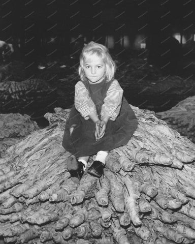 Beautful Young Girl Sitting On Tree Trunk Vintage 8x10 Reprint Of Old Photo