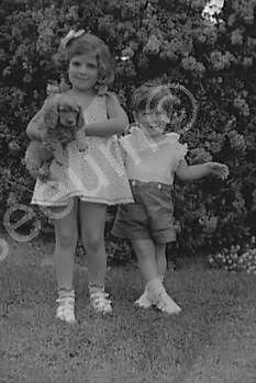 Adorable Children With Dog 1930s Old 4x6 Reprint Of Photo