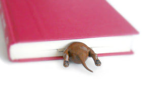 Dachshund in the Book