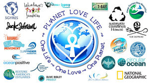 Ocean cleanup organizations