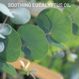 Soothing Eucalyptus Oil