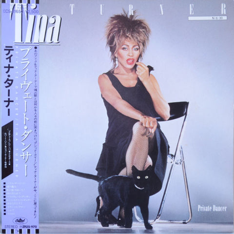 Tina Turner ‎– Private Dancer