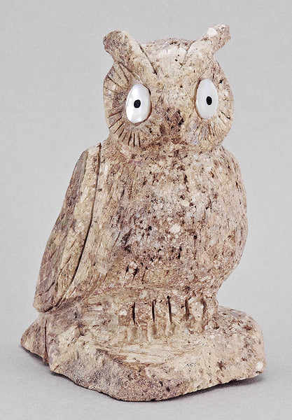 Visionary Owl of Cerrillos Turquoise