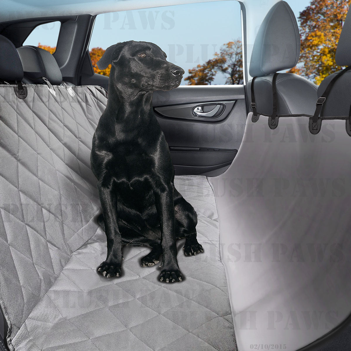 Why You Need a Pet Seat Cover