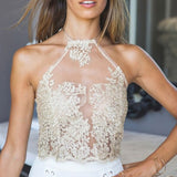 Elegant White Lace Mesh Crop Top Summer Beach Backless Short Halter Tops Sexy - Crystalline