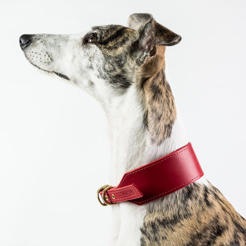 Handmade Leather Whippet Collars