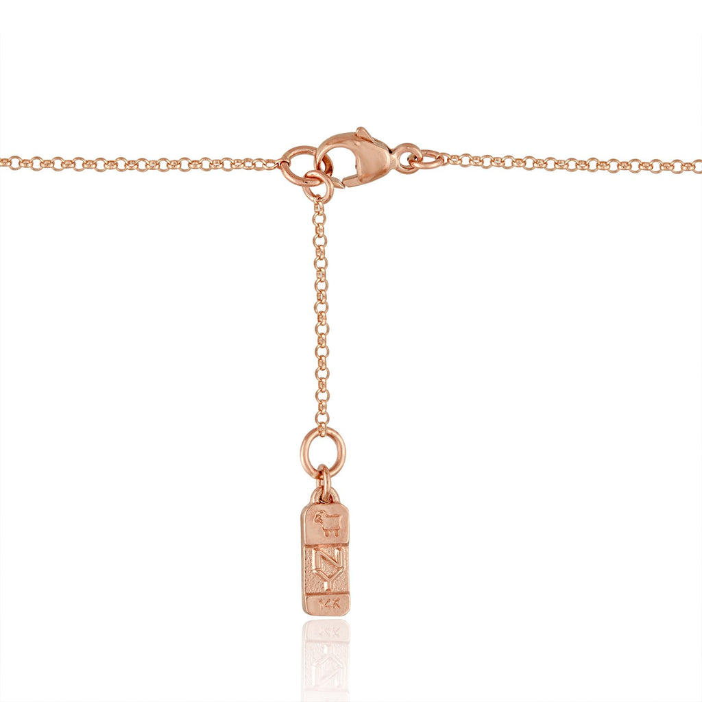 14K Rose Gold Lane Lariat Necklace