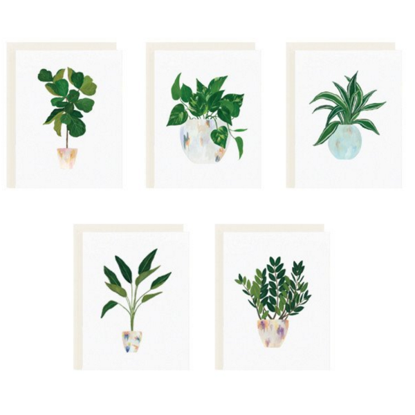 Our Heiday House Plant Series Assorted Box Set