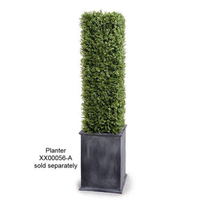 "Boxwood Column, 42""H - New Growth Designs"