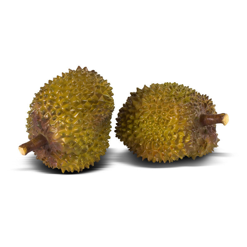 Durian - New Growth Designs