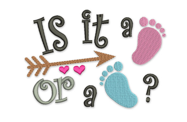 Is it a Boy or a Girl? Filled Embroidery SA002