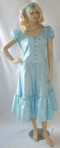 Alice Costume  ~ New style ~  Hire ~ Size 12 / 14