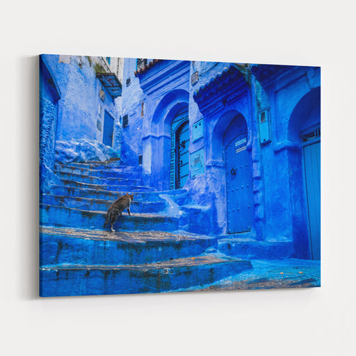 A Cat Climbs Stairs On A Blue Painted Street In The Medina Of Chefchaouen In Morocco Canvas Wall Art Print