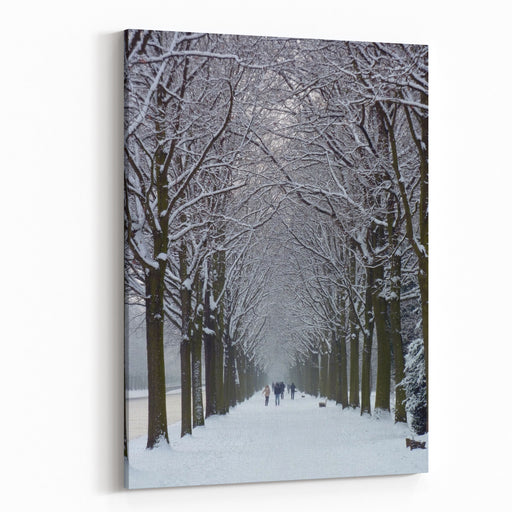 Scenic Winter Landscape With A Frozen River And Pathway Graced With Trees In The Royal Karlsaue Park In Kassel, Germany Canvas Wall Art Print