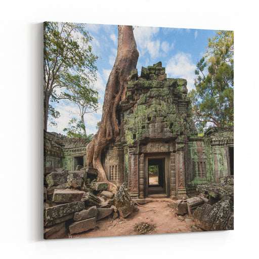 Angkor Wat Cambodia Ta Prohm Khmer Ancient Buddhist Temple In Jungle Forest Famous Landmark, Place Of Worship And Popular Tourist Travel Destination In Asia Canvas Wall Art Print