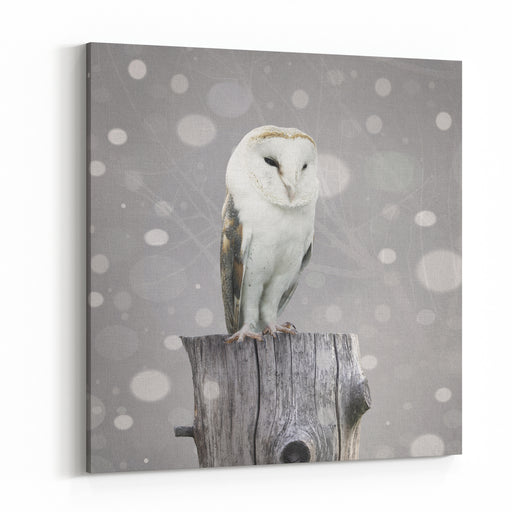 A Beautiful Barn Owl Above A Trunk With A Abstract Of Snow And BranchesWith Textured Effect Canvas Wall Art Print