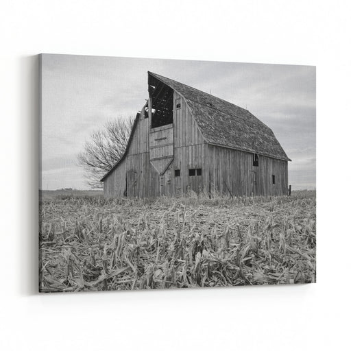 A Barn Scene On A Farm In Iowa Canvas Wall Art Print