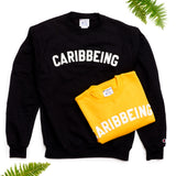 CARIBBEING Varsity Crewneck with Sewn Felt Lettering