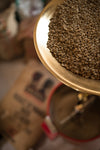 Some Facts About Specialty Coffee