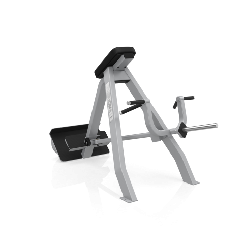 Precor Icarian Series 311 Incline Lever Row