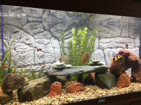Jungle Bob 3D Aquarium Background 48X16 Inch For 40 Gallon Long Thin Grey 8302