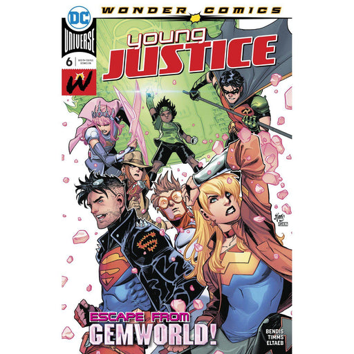 Young Justice #6-Georgetown Comics