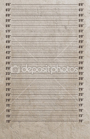 1-6 Inch Mugshot Theme Print Photography Backdrop