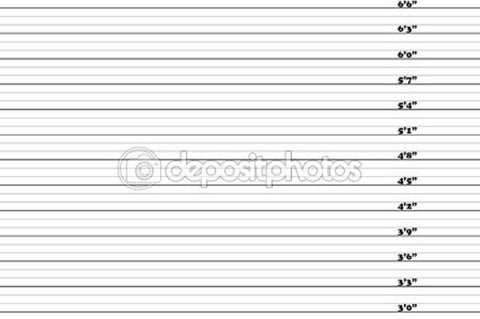 3-6.6 Inch Mugshot Theme Print Photography Backdrop