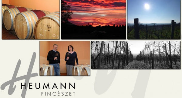 Introducing some fine red wines from Villany