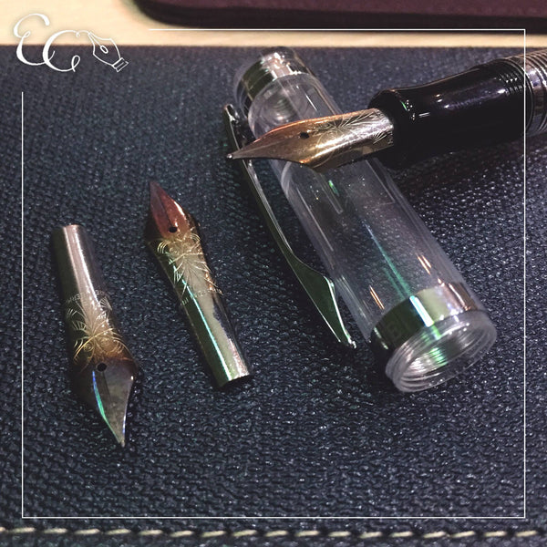 Nemosine Re-Entry / Torched Nibs