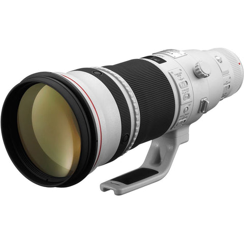 Canon 500mm f/4 L EF IS II USM Lens