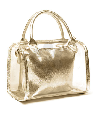 Stella Leather Trim Clear Bag