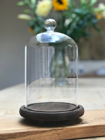 Wooden Base Glass Dome
