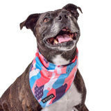 Floss Mesh Bandana Bandana - Wolves of Wellington